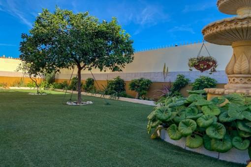 Área de jardín bien cuidada
