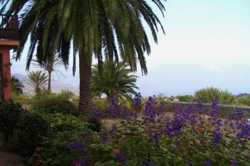 Vista panorámica a Santa Cruz y sobre el Atlántico