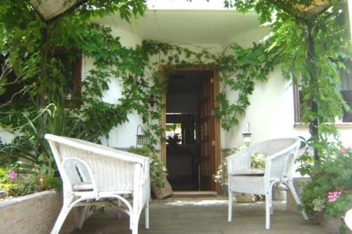 La Orotava: Un Oasis verde en un lugar conveniente