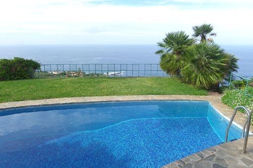 La piscina rodeada de una espectacular escena de naturaleza