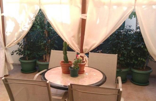 Acogedora terraza con plantas y asientos