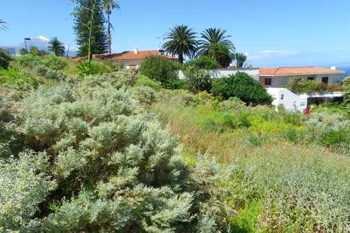 Vista suroeste hasta El Teide