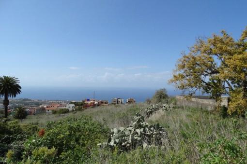 Oportunidad: Finca de 8000 m2 con vistas al mar y dos solares urbanos en La Victoria de Acentejo