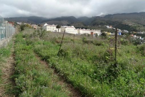 Un montón de espacio para el jardín o la agricultura ecológica